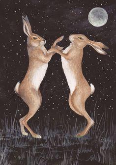 Boxing Hares - Sara Westaway