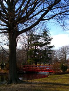 The Red Bridge in Knights Park, Collingswood NJ