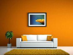 orange-wand-und-weißes-sofa-wandfarben-vorschläge