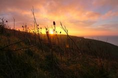 Afton Down 080213 by Visit Isle of Wight, via Flickr