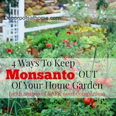 4 Ways To Keep Monsanto Out Of Your Home Garden - Deep Roots at Home  A Great List Of Companies That Sell Seeds That Are Not Owned By Monsanto or Seminis. Seed Compani, Garden Ideas, Garden White, Vegetables Garden, Deep Root, Flowers Garden