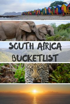 South Africa bucketlist, travel, South Africa things to do