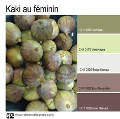 Une #ambiance poudrée et féminine autour du Vert #Kaki et de bruns rosés qu'illumine la touche de Vert Hévéa. www.chromaticstore.com