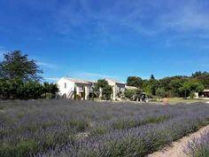 Chambres d'hôtes et gîte à vendre en Drôme provençale limite Vaucluse