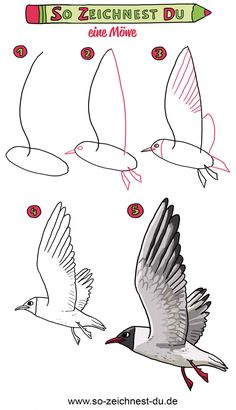 This is how you draw a seagull Drawing Lessons For Kids, Art Drawings For Kids, Bird Drawings, Easy Drawings, Animal Drawings, Art Lessons, Art For Kids, Bird Drawing For Kids, Pencil Sketch Drawing