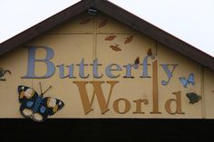 Butterfly World (Klapmuts 45min from Cape Town)