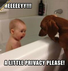 Hey A Little Privacy Please ! | Click the link to view full image and description : )