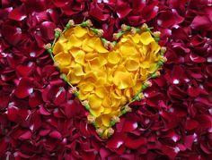 Zawsze mów  że kochasz #iloveyou #heart #serce #kocham : Kolekcja poniedziałkowych serc Page Hodell Monday Hearts 309