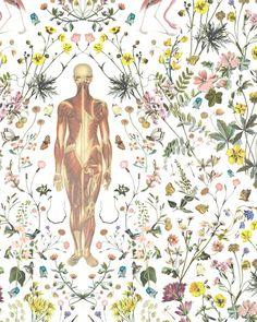 """Human in Nature""  Beautiful anatomical flowery wallpaper Jonny Macali for Gabriel Valdivieso design.  http://jonnymacali.com/Human-in-Nature-Special-Wallpaper"