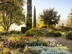 Urban Garden Design In his native Italy, garden designer Luciano Giubbilei has created a verdant oasis that grows under the Tuscan sun. - In his native Italy, garden designer Luciano Giubbilei has created a verdant oasis that grows under the Tuscan sun. Tuscan Garden, Sun Garden, Farmhouse Garden, Italian Garden, Dream Garden, Mediterranean Garden Design, Moroccan Garden, Mediterranean Style, Under The Tuscan Sun