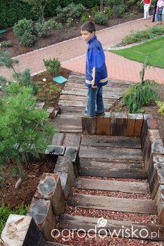 Spotkanie u Kapiasów - wrzesień 2012 - strona 34 - Forum ogrodnicze - Ogrodowisko