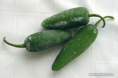 Freezing Peppers from the Garden | Recipes - MeatIsNotASideDish