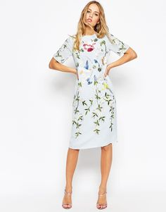 ASOS+Bird+And+Floral+Embroidered+Shift+Dress