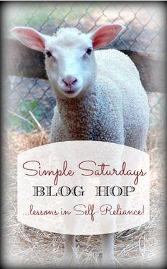Simple Saturdays Blog Hop 1/16/16