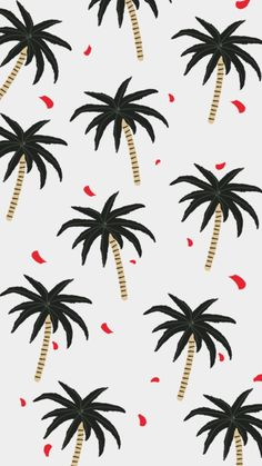 Wallpaper palm trees