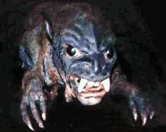 Weird creatures tend to show their faces on the planet Earth. Thanks to the Internet we are able to see a lot of freaky unexplainable ph. Weird Creatures, Mythical Creatures, Curious Creatures, Mythological Creatures, Ufo, Puerto Rico, The Chupacabra, Lago Ness, Legends And Myths