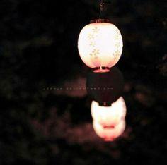 【静赏花灯】灯笼里的古韵魅影