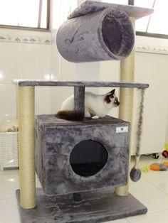 Fotos de Arranhadores e árvores de escalada para gatos/ personalizados Rio de Janeiro