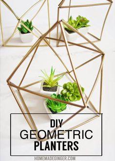 DIY Geometric Planters using straws.