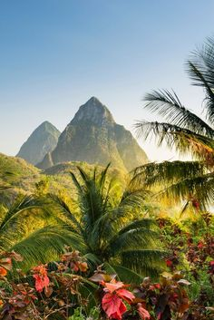 Castries, St. Lucia with the towering twin peaks of the Piton mountains in the distance.