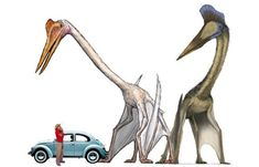 Many new species appeared on all continents and one of them was the giant Quetzalcoatlus that lived in North America. Reptiles, Cool Science Facts, Giant Animals, History Images, Jurassic Park World, Extinct Animals, Dinosaur Art, Prehistoric Creatures, Popular Art