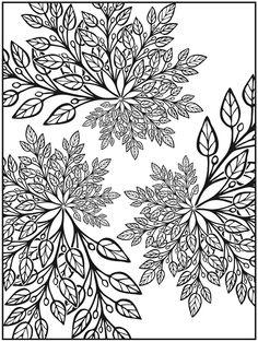 Creative Haven Nature Fractals Coloring Book