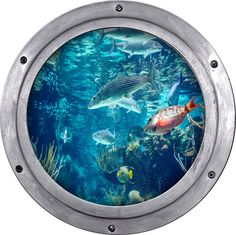 Porthole view of fish tank aquarium, Wall decal, removable wall fabric, wall art by StyleAwall on Etsy https://www.etsy.com/listing/208646683/porthole-view-of-fish-tank-aquarium-wall