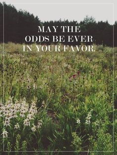 May the odds be ever in your favor ♡