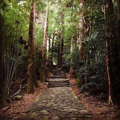 熊野古道 #熊野古道 #和歌山 #日本 #絶景 #世界遺産 #kumanokodo #wakayama #japan #stunningview #worldheritage