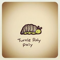 When u luv roly Pollies but are addicted to turtles. Sweet Turtles, Cute Turtles, Baby Turtles, Cute Turtle Drawings, Animal Drawings, Cute Drawings, Tiny Turtle, Turtle Love, Kawaii Turtle
