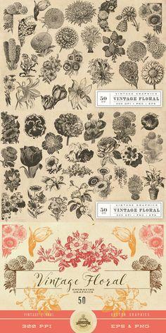 "Vintage Flower Vector Graphics  -  <a href=""https://www.designcuts.com/product/vintage-flower-vector-graphics/"" rel=""nofollow"" target=""_blank"">www.designcuts.co...</a>"
