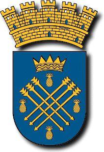Escudo de Caguas P.R.