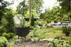 SMÅ DETALJER: Det er ikke alltid så mye som skal til for å fåen hyggelig hyttehage. En beplantet jerngryte med løvmunn og stemorsblomster, noen friserte busker og små gangveier skaper en trivelig atmosfære.