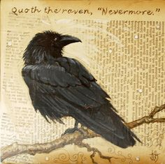 raven.(* I saw one of these clever little beauties outside my window the other day.  he was big and sleek and glossy black.  how is a raven like a writing desk???   In native american lore the raven symbolizes change or transformation*).   -Mel