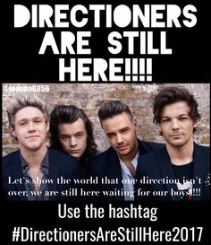 #DirectionersAreStillHere2017