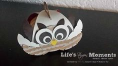 Cute little owl! Made with Stampin' Up! curvy keepsakes box! by Life's Stampin' Moments