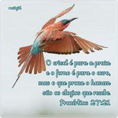 #Provérbios #Sabedoria #Equilíbrio  #GuardeSeuCoração #DeusFiel #rosiigiil