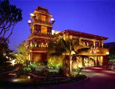 To eat lunch or dinner at Rainforest Cafe at downtown Disney in Anaheim, CA.