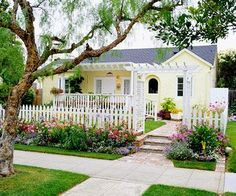 Pretty Front Yard, and I love the fencing and walkthrough for my morning glories!  The flowers in front of the fence are a brilliant idea!!