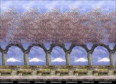 04-sakura-grove-.jpg