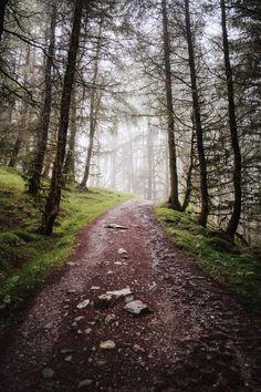 West Highland Way – Teil — Reisebericht von Mario Taferner West Highland Way, Mario, Hiking, Country Roads, Adventure, Scotland, Travel Report, Travel, Pictures