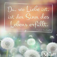 #Zitate und #Sprüche: »Da, wo Liebe ist, ist der Sinn des Lebens erfüllt.«