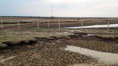 Dry plains in Casanare, BBC News - Casanare drought raises Colombia climate fears