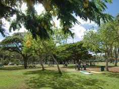 Kapiolani Park , Waikiki , Oahu