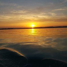 Jó éjt! Good night ! #sunsethungary #sunsetbalaton #fivesneakers #wecollectmemories #emlékeketgyűjtünk #5tornacsuka Goa, Hungary, Good Night, Celestial, Sunset, Instagram, Travel, Outdoor, Nighty Night