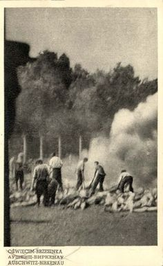 One of the only three photographs documenting the murder of the victims and the cremation of the bodies in the Auschwitz-Birkenau camp. The pictures were taken by stealth by a member of the Sonderkommando and smuggled out by the international underground operating in the camp. The picture shows the cremation pits ... which were used when the crematoria in the camp were not functioning. A former Sonderkommando member, Alter Fajnzylberg, later described how the picture was taken at crematorium…
