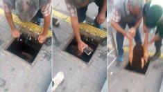 #Insólitas Solo en Tucumán, se metió en una alcantarilla en 25 de Mayo y Santiago para recuperar su celular
