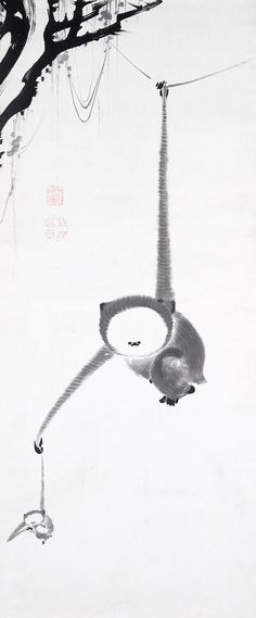 """Ito Jakuchū 伊藤 若冲 - """"Two Gibbons Reaching for the Moon"""" - 1770 - Edo Period - Hanging scroll; ink on paper ~ Zen Painting, Japanese Painting, Chinese Painting, Art Chinois, Art Asiatique, Year Of The Monkey, Art Japonais, Art Graphique, Japanese Prints"""