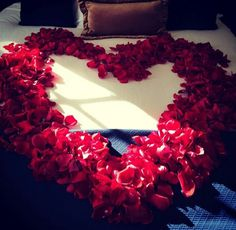 We have the rose petals you need to create this look at http://www.petalgarden.com/Valentines_Day.htm