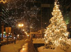 CHRISTMAS DECOR!!!